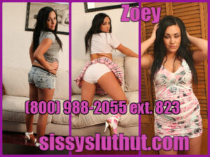 online sissy training
